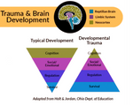 Trauma-Informed Practices for Use with Children and Families Affected by Parental Abduction