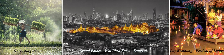Thailand Harvesting Rice, Grand Palace in Bangkok, Festival of Lights