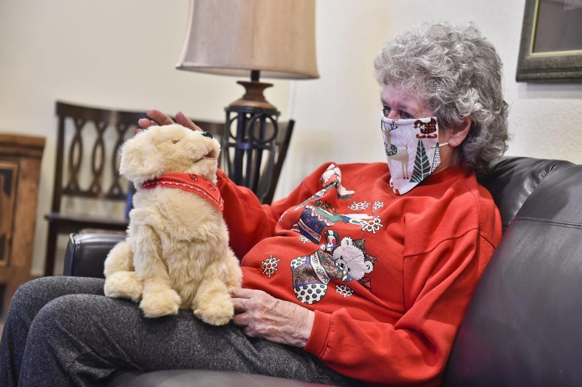 Helena organization combating senior loneliness with robotic pets