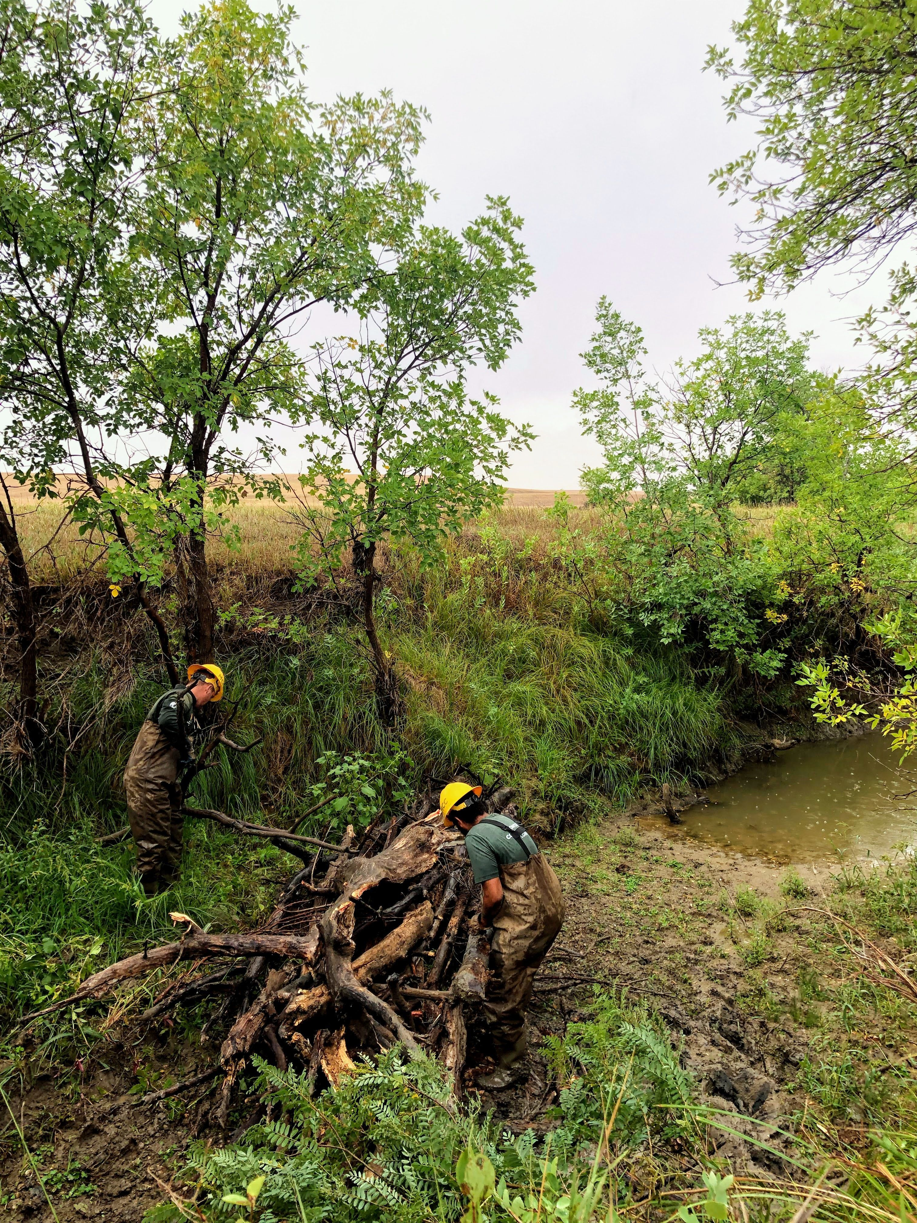 A crew drags a large log towards a stream
