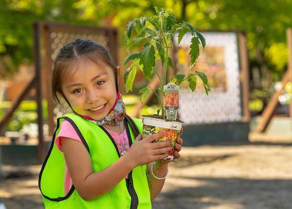 Partner Spotlight: Hardy Boy Plants and Designscapes Colorado