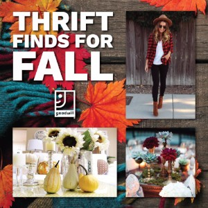 Thrift Finds for Fall