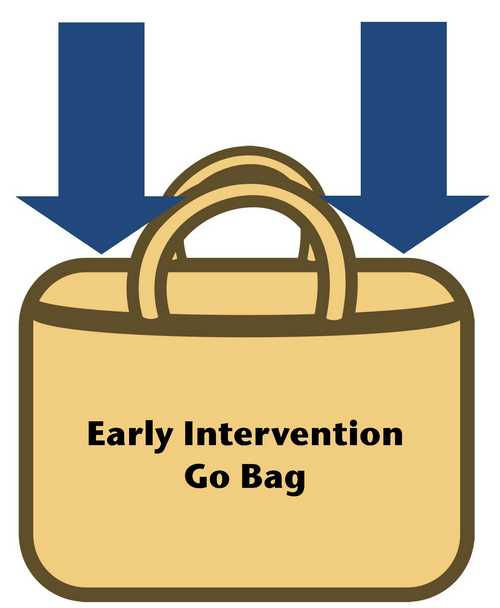 Early Intervention Go Bag
