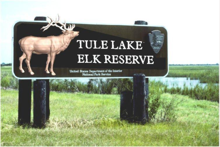 G16007 - Redwood National Park  Entrance Sign with 3D Carved Elk