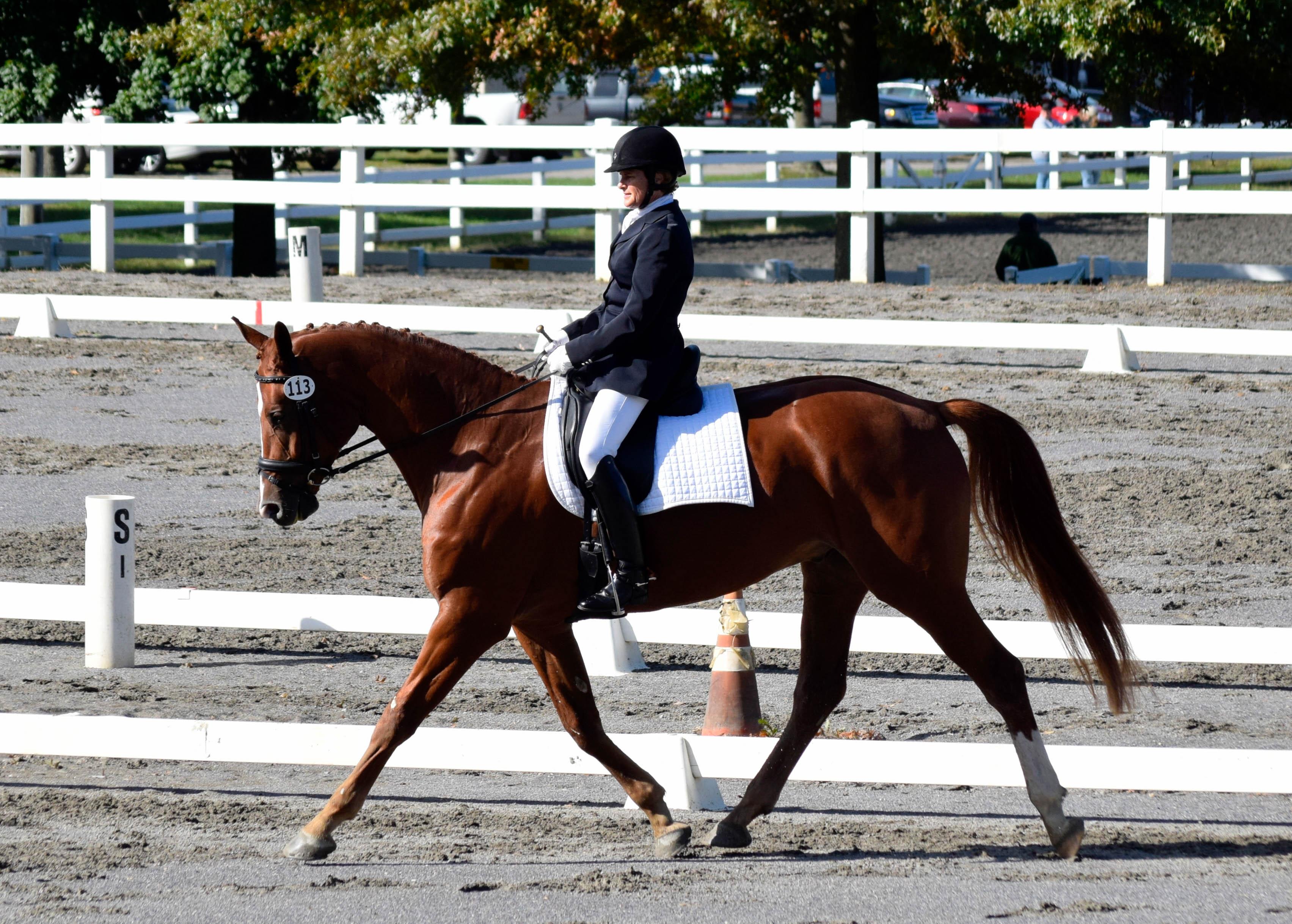 Christine Dickenson 2 credit Terry Wetzel-Wetzel Equestrian Photography