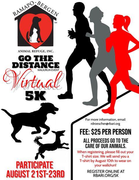 RBARI's Go The Distance Virtual 5K Walk/Run Event