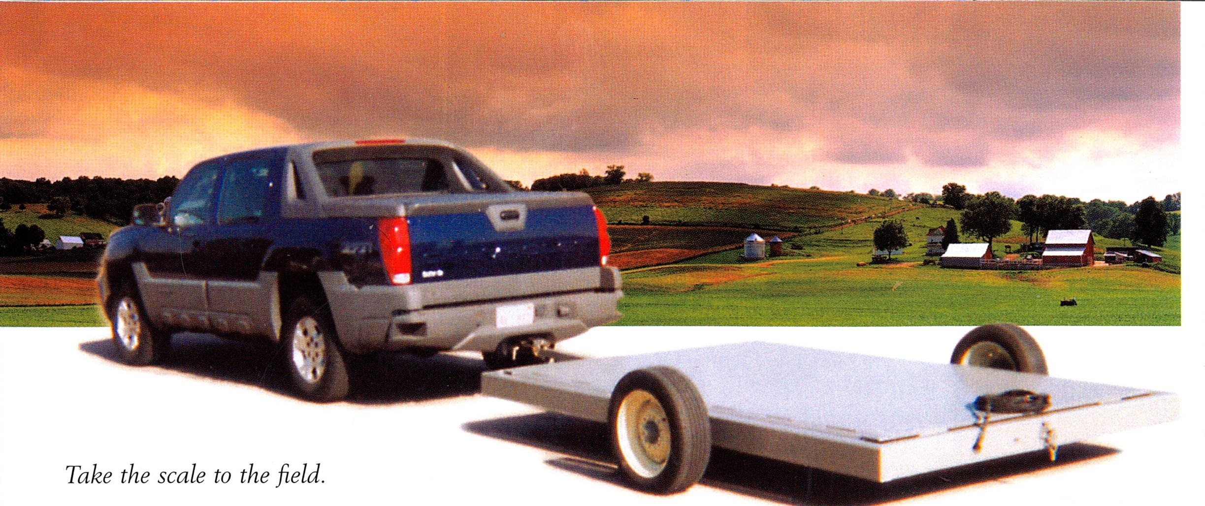 Portable Platform Scale Removable Wheels and Hitch