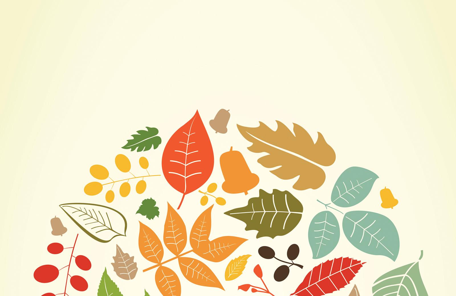 Fall into Volunteering!