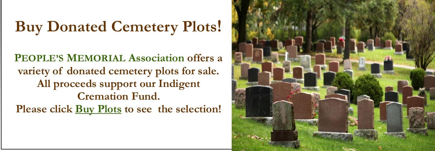 Cemetery Plot 2016