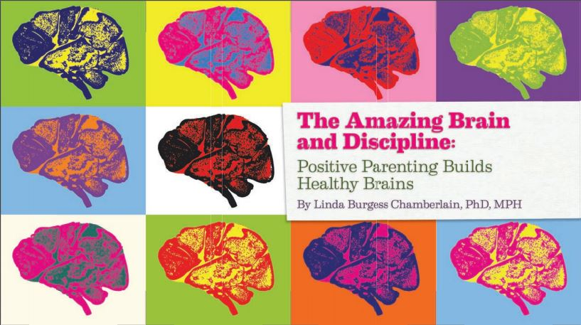 The Amazing Brain and Discipline: Positive Parenting Builds Healthy Brains