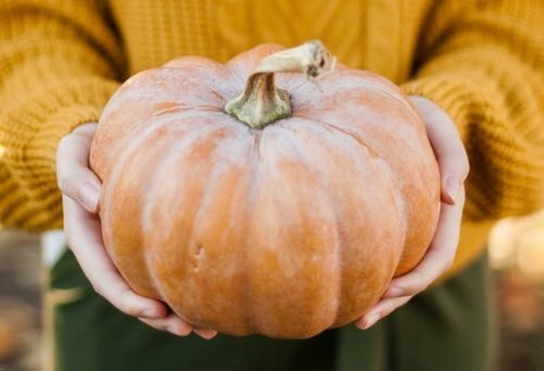 5 Ways to Give Back this Halloween