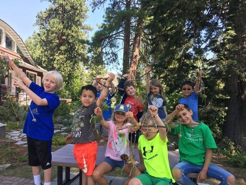 Nature Day Camp Week 3 (Grades 4-6)
