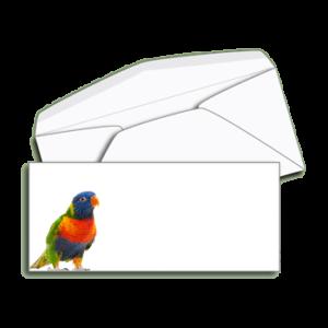 Item B10 - #10 Regular Envelope,  Full Color Printing