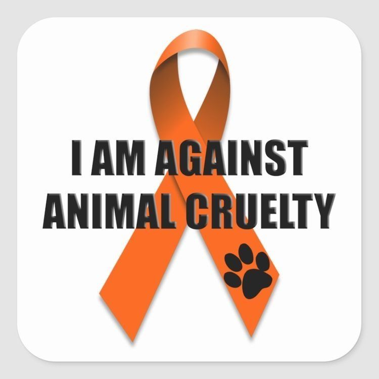 April Is Prevention of Cruelty to Animals Month