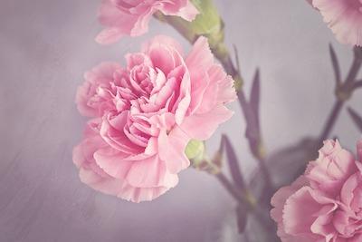 Flower Bouquet Gift Card