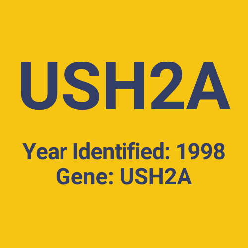 USH2A (Year Identified: 1998 | Gene: USH2A)