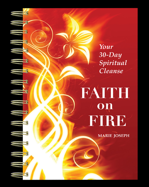 Faith on Fire Book
