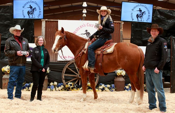 Annual Colt Sale Raises Over $96,000 for Natural Horsemanship Program