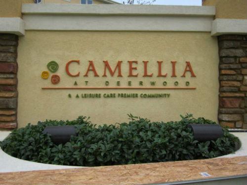 CAMELLIA (Exterior)