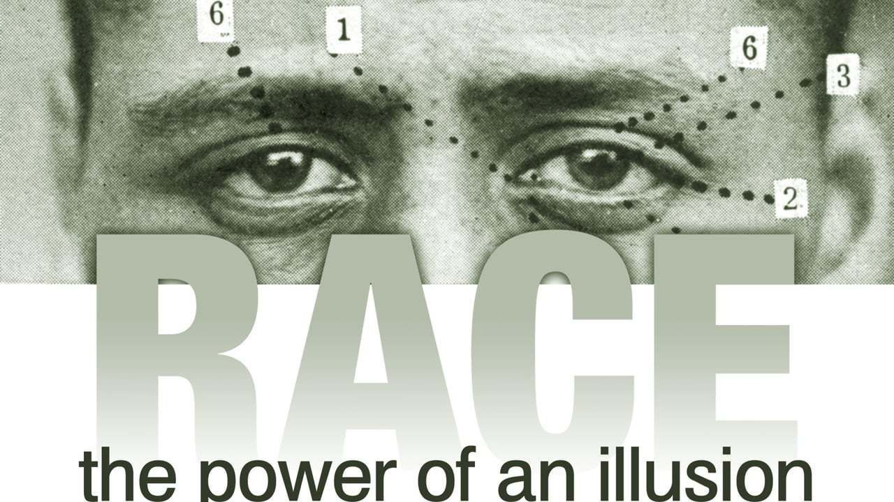 Race: The Power of an Illusion Reflection Sessions