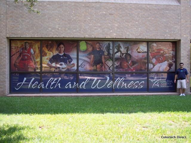 Large Window Mural