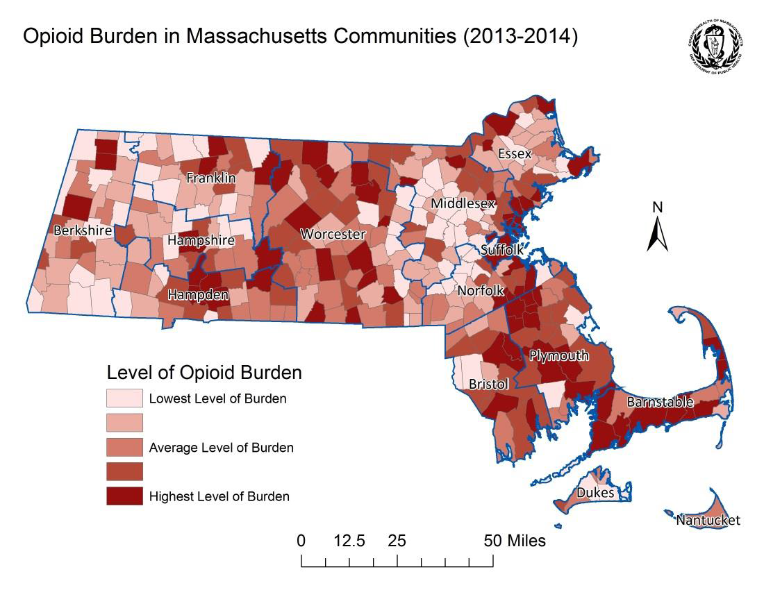 The Effect the Opioid Epidemic is Having on Children