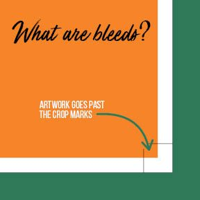 What are Bleeds and Crops?