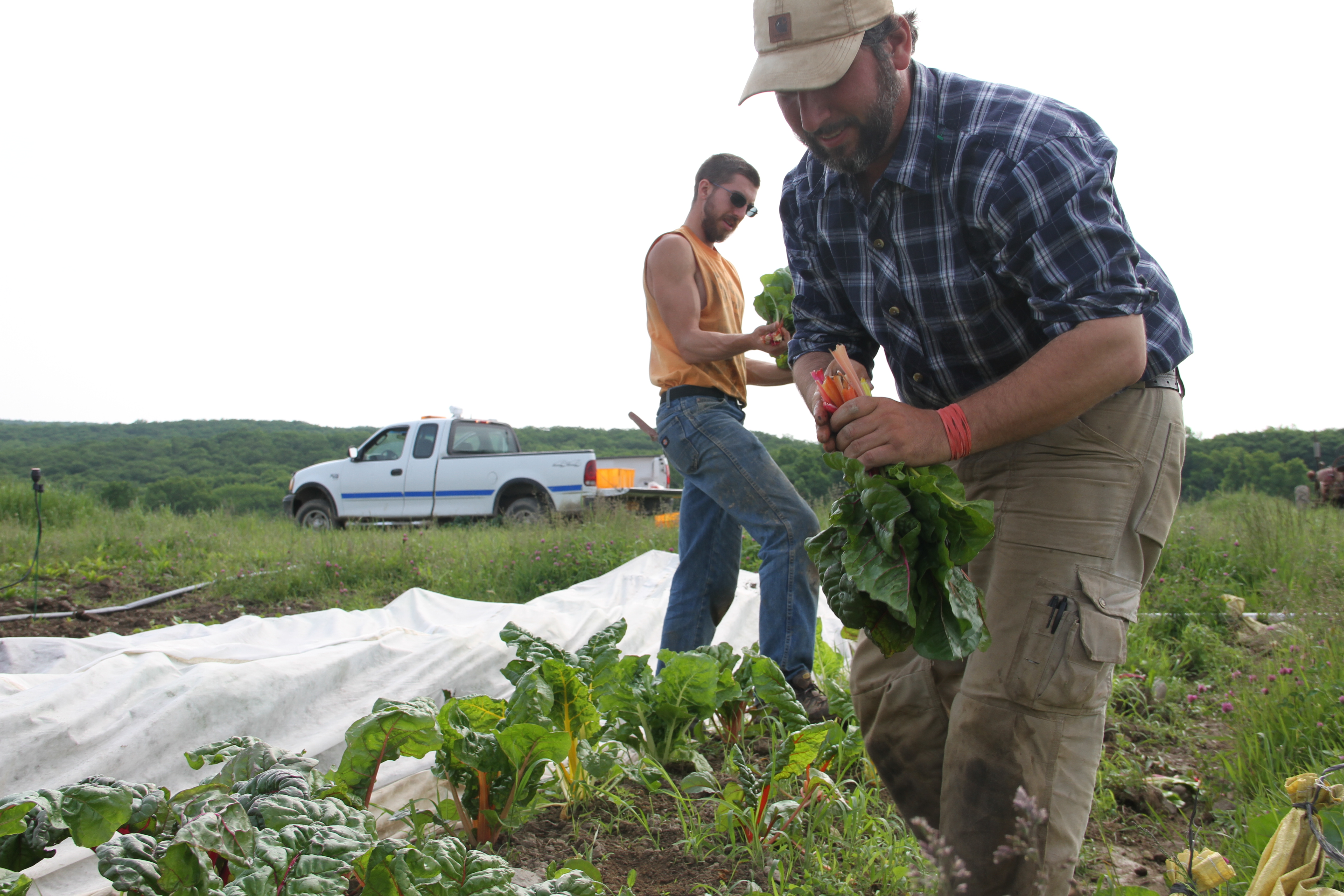 Through the Eyes of a Farmer: Weather's New Normal