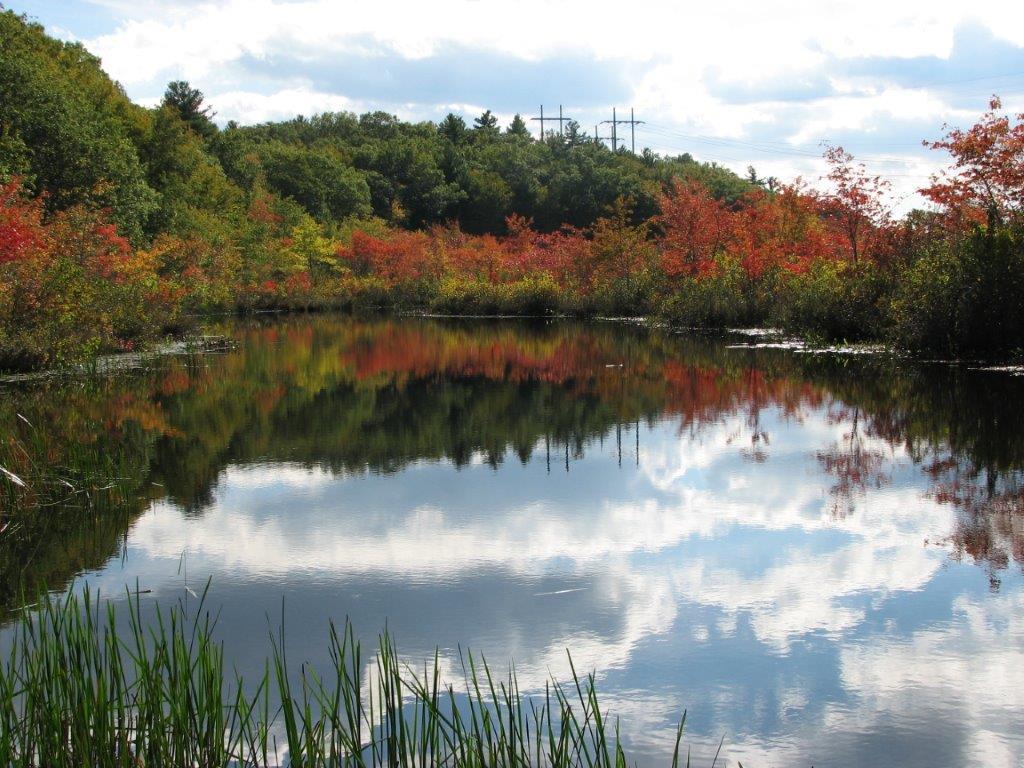 Audubon Society of Rhode island Davisville Memorial Wildlife Refuge North Kingstown Birds Birdwatching hiking Hunt River environment