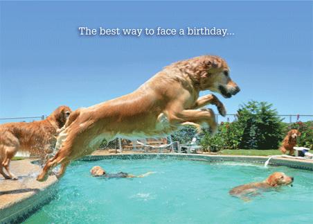 Birthday: B-6