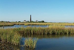 Horseshoe Marsh