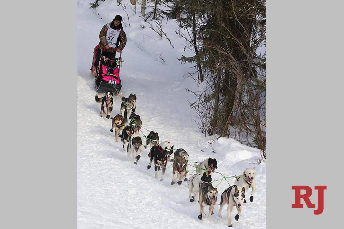 Retired Iditarod dog to run in Candlelighters benefit