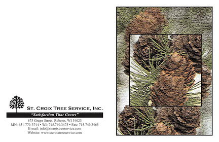 St. Croix Tree Service Winter