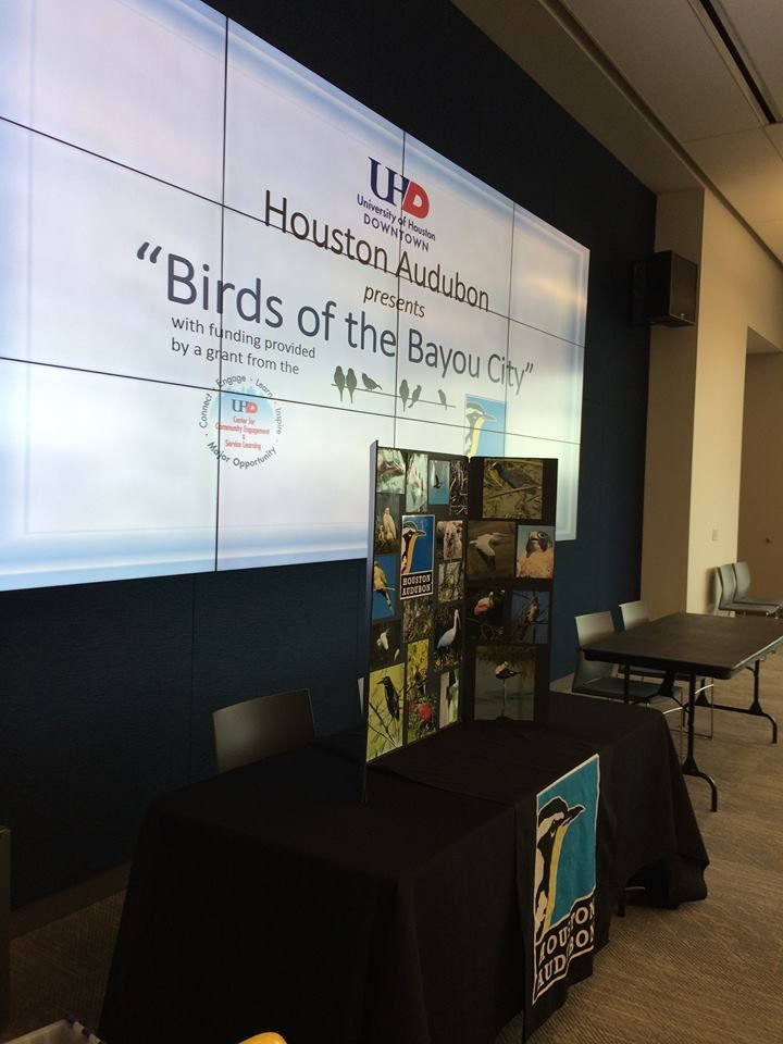 University of Houston Presentation