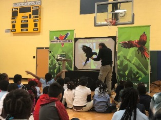 How Litter Hurts Animals / The Wings of Wonder Bird Show