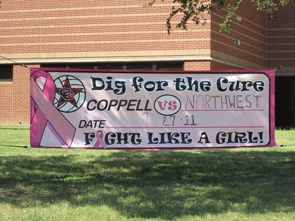 Dig for the Cure Banner