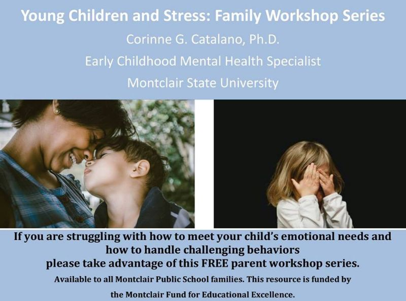 Young Children and Stress: Family Workshop Webinar Series
