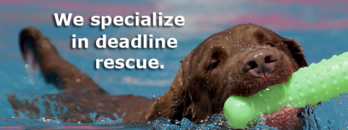 We specialize in deadline rescue!