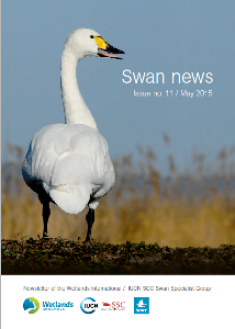 Looking for information about the world's swan species? Check out the Swan News of the Swan Specialist Group
