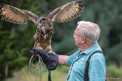Environmental education animals, Raptor Weekend, Audubon Society of Rhode Island, Nature Programs