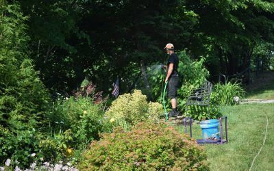 VA Grotto Gardens Volunteers Featured in Dayton Daily News Article