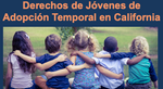 The Rights of California Foster Youth (spanish)