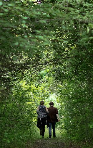 Hikers enjoying the trails at Audubon Caratunk Wildlife Refuge