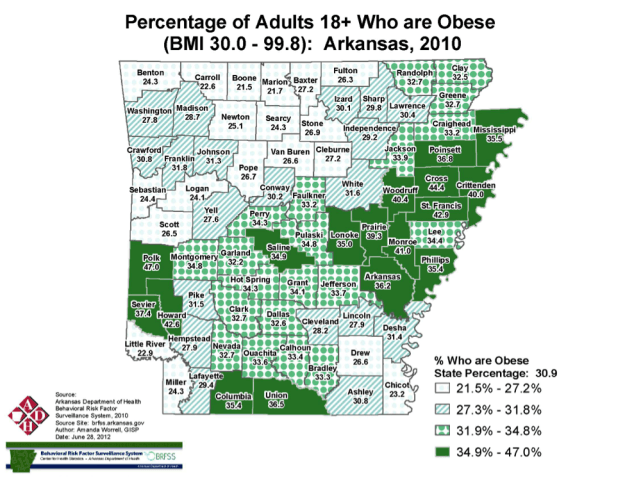 Arkansas Coalition For Obesity Prevention What We Do Mayors