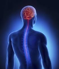 Multiple Sclerosis Clinic