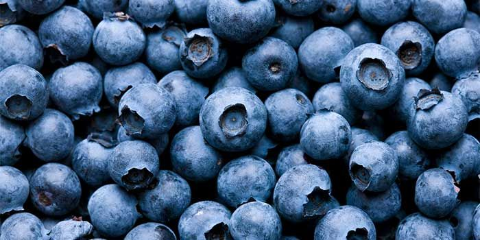 4th Annual Blueberry Breakfast to Benefit CASA