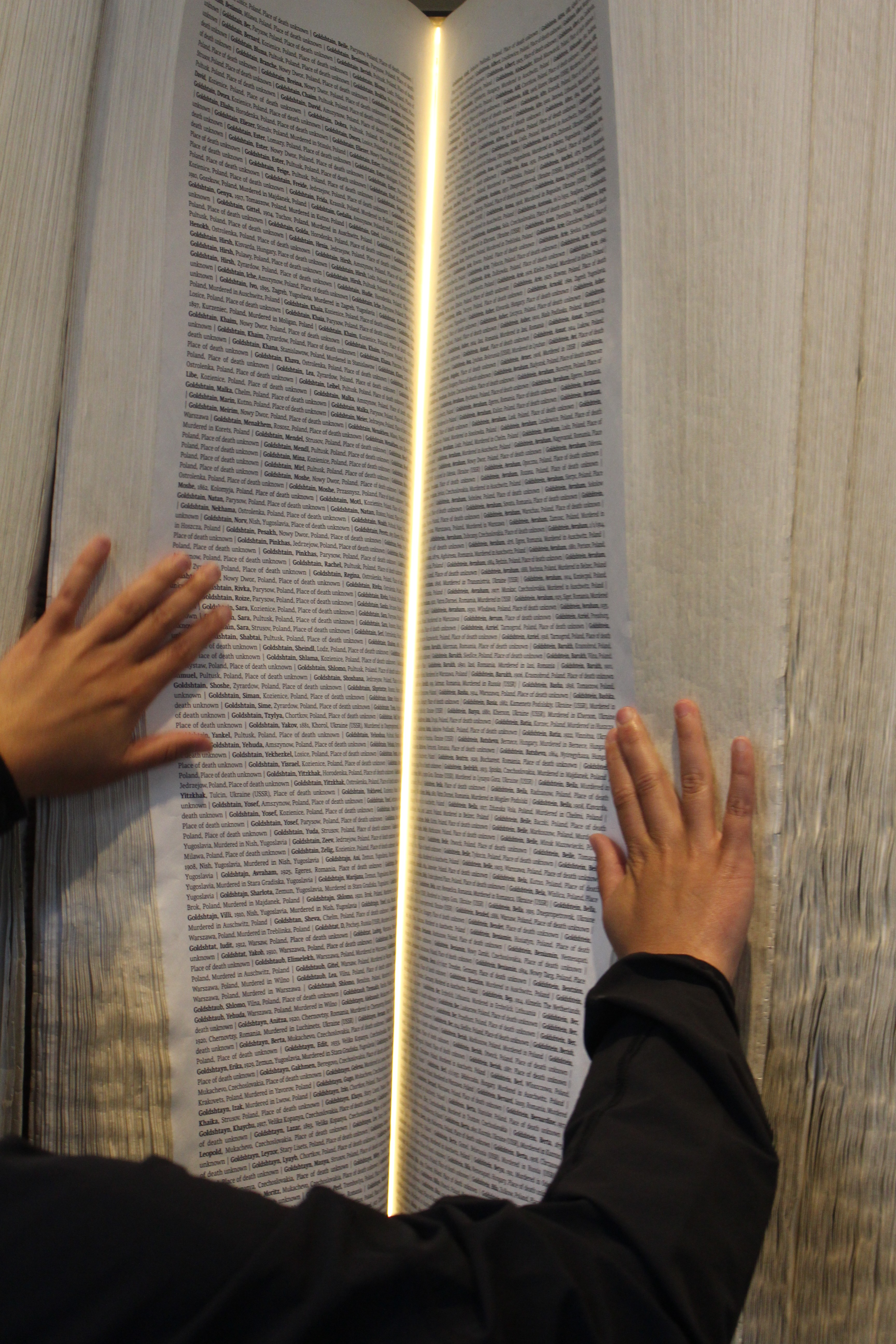 Pages of the Book of Names in Auschwitz I
