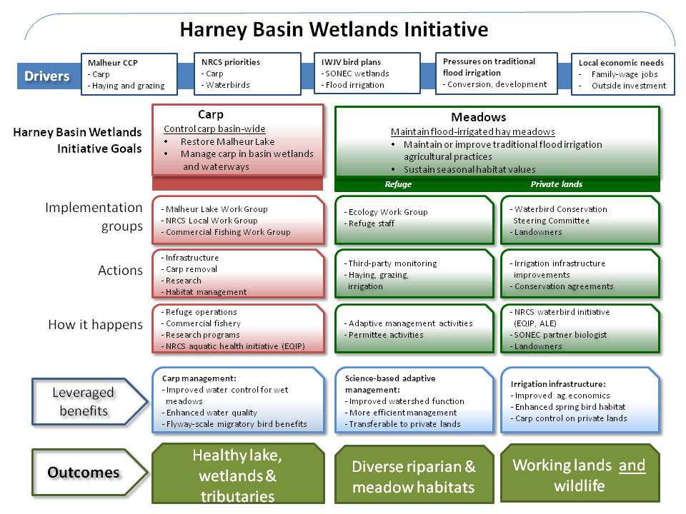 Harney Basin Wetlands Initiative Flowchart