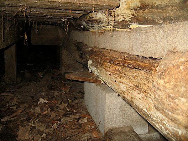 Split Logs - 2011