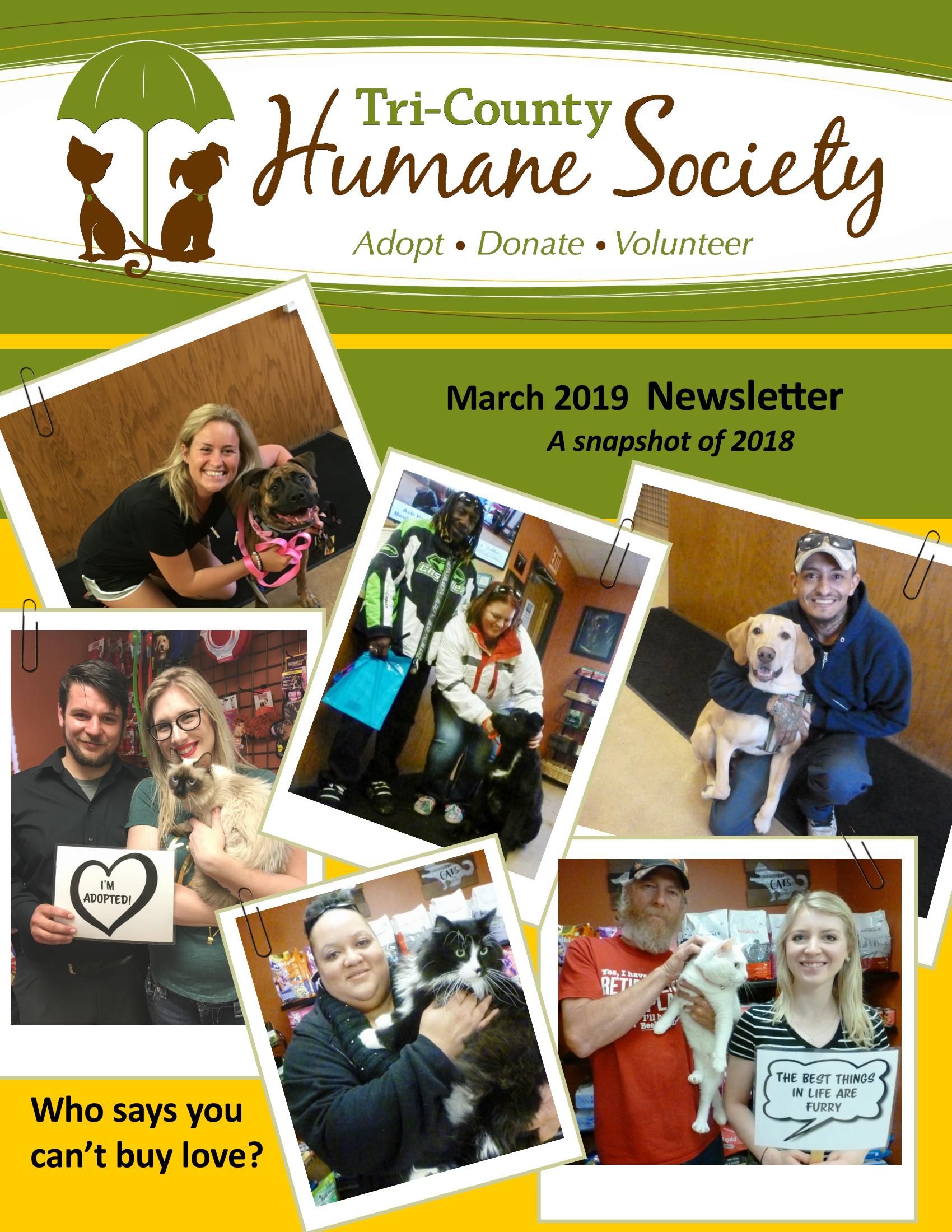 Newsletter - March 2019 (.pdf download)